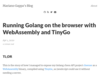 Running Golang on the browser with WebAssembly and TinyGo – Mariano Gappa's Blog